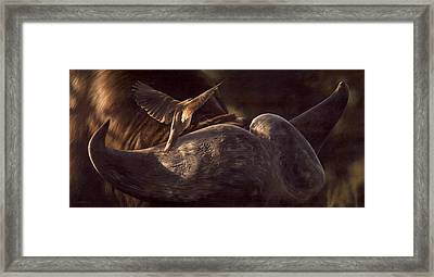 Red-billed Oxpecker And Cape Buffalo Painting Framed Print by Rachel Stribbling