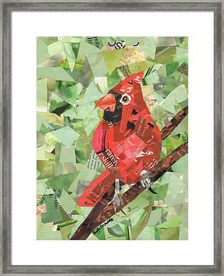 Red Bird Framed Print by Paula Dickerhoff