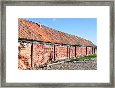 Red Brick Bard Framed Print by Tom Gowanlock