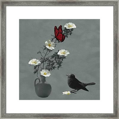 Red Butterfly In The Eyes Of The Blackbird Framed Print by Barbara St Jean