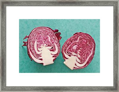 Red Cabbage Framed Print by Tom Gowanlock