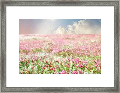 A Perfect World Framed Print by Amy Tyler