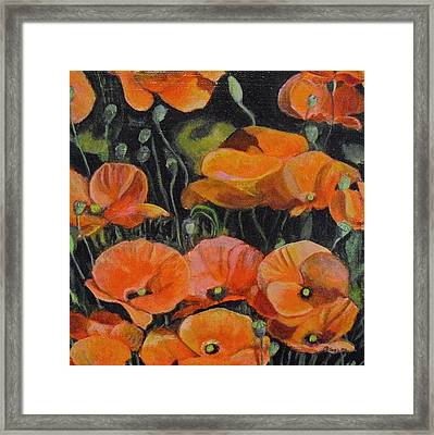 Red Corn Poppies Framed Print by Melissa Torres