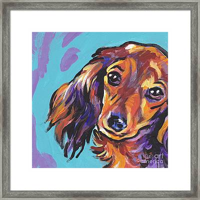 Red Doxie Baby Framed Print by Lea S