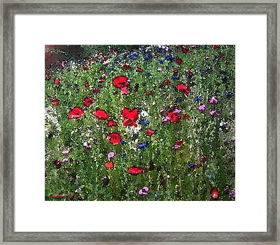 Red Flowers Framed Print by Cadence Spalding