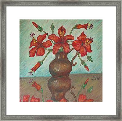 Red Hibiscus With Blue Background Framed Print by Claudia Cox