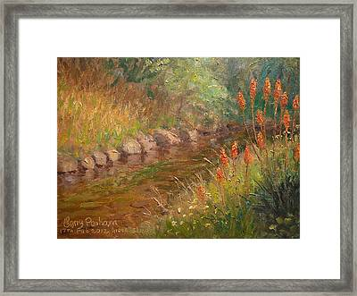 Red Hot Pokers Framed Print by Terry Perham