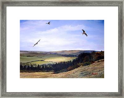 Red Kites At Coombe Hill Framed Print by Barry BLAKE
