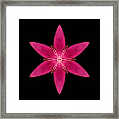 Red Lily I Flower Mandala Framed Print by David J Bookbinder