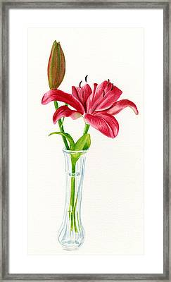 Red Lily In A Vase Framed Print by Sharon Freeman