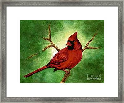 Red Male Cardinal Framed Print by Nan Wright