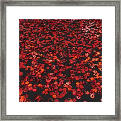Red Matter/orgasmic Symbolism Framed Print by George Curington