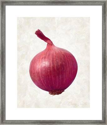 Red Onion  Framed Print by Danny Smythe
