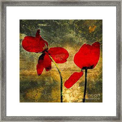 Red Petals Framed Print by Bernard Jaubert