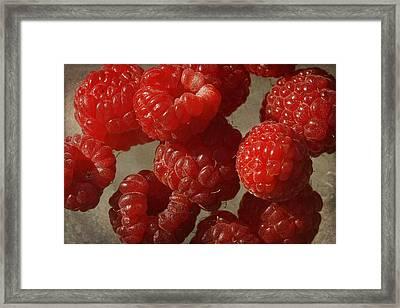 Red Raspberries Framed Print by Cindi Ressler