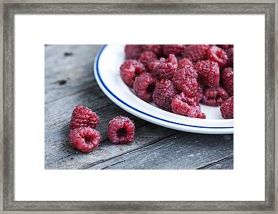 Red Raspberries Framed Print by Juli Scalzi