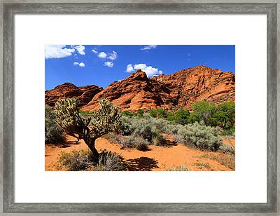 Red Rock And Blue Framed Print by Nick Oman