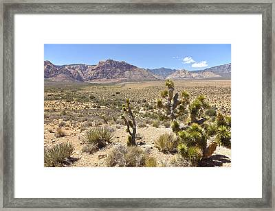 Red Rock Canyon Landscape Nevada. Framed Print by Gino Rigucci