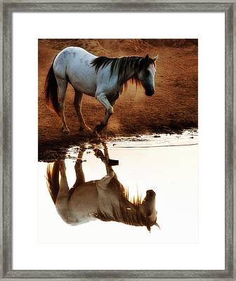 Red Rock Reflections Framed Print by Ron  McGinnis