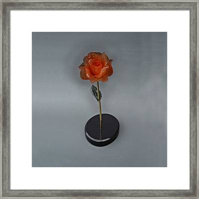Red Rose Framed Print by Leslie Dycke