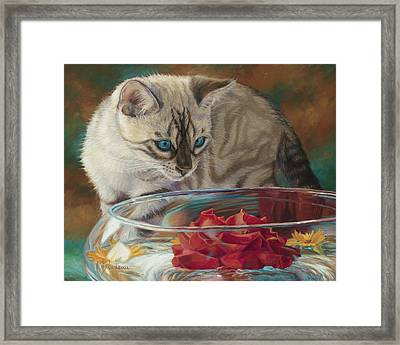 Red Rose Framed Print by Lucie Bilodeau