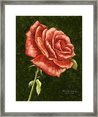 Red Rose Framed Print by Mary Ann King