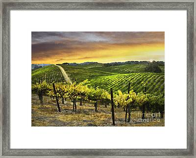 Red Soles Sunrise Framed Print by Sharon Foster