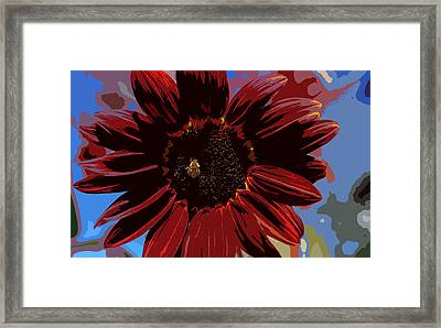 Red Sun Honey Cut Out Framed Print by Scott Campbell
