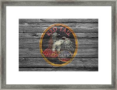 Red Tail Framed Print by Joe Hamilton