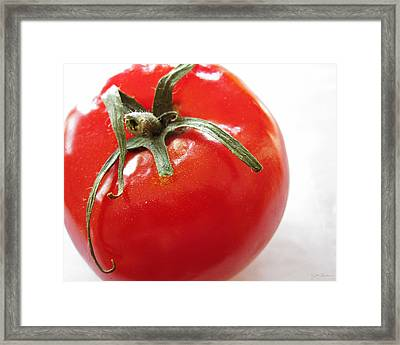 Red Tomato Framed Print by Julie Magers Soulen
