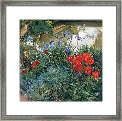 Red Tulips And Geese  Framed Print by Timothy Easton