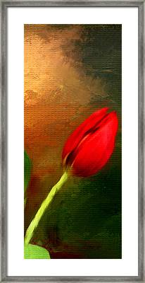 Red Tulips Triptych Section 3 Framed Print by Lourry Legarde