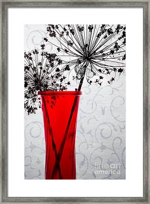 Red Vase With Dried Flowers Framed Print by Michael Arend