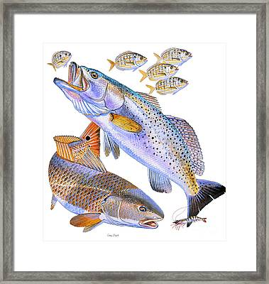 Redfish Trout Framed Print by Carey Chen