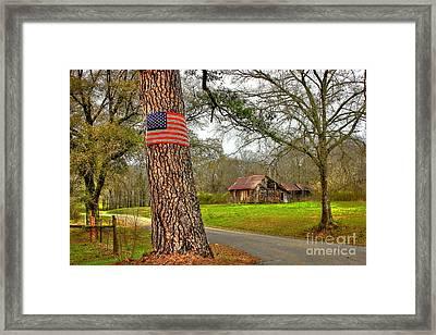 American Flag On The Redneck Flag Pole Framed Print by Reid Callaway
