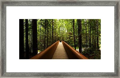 Redwood Bridge Framed Print by Chad Dutson