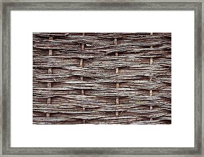 Reed Fence Framed Print by Tom Gowanlock