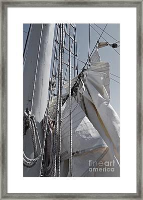 Reefing The Mainsail Framed Print by Jani Freimann