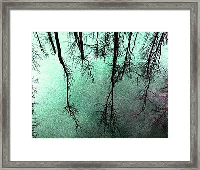 Reflected Trees Framed Print by Joseph Tese