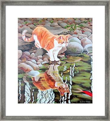 Reflecting Framed Print by Sandra Chase