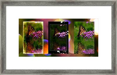 Reflection Above The Pond Framed Print by EricaMaxine  Price