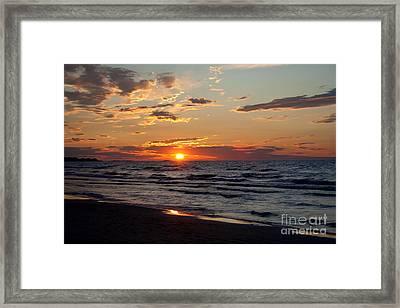 Reflection Framed Print by Barbara McMahon