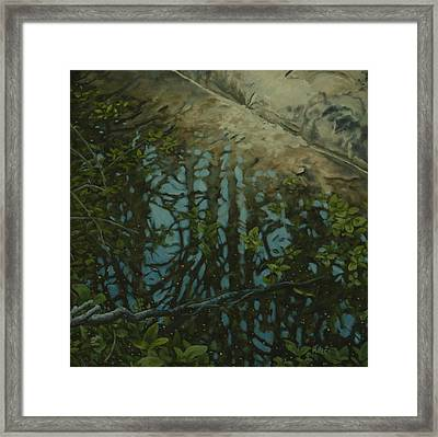 Reflection II Framed Print by Michael Marcotte
