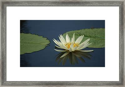 Reflection In Time. Framed Print by Rob Luzier