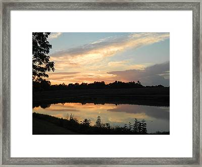 Reflection Framed Print by Linda Brown