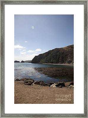 Reflection Illusion Framed Print by Amanda Barcon