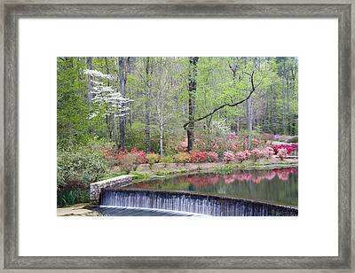 Reflections Framed Print by Eggers   Photography