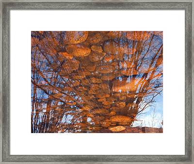Reflections Framed Print by Eric Rundle