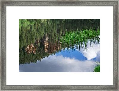Reflections In A Mountain Pond Framed Print by Mary Lee Dereske