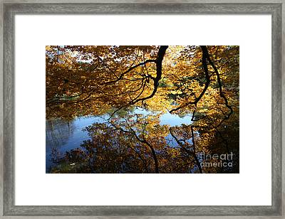 Reflections Framed Print by John Telfer